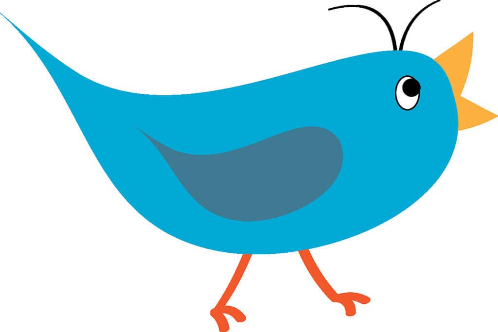 Get-reviews-Twitter-bird