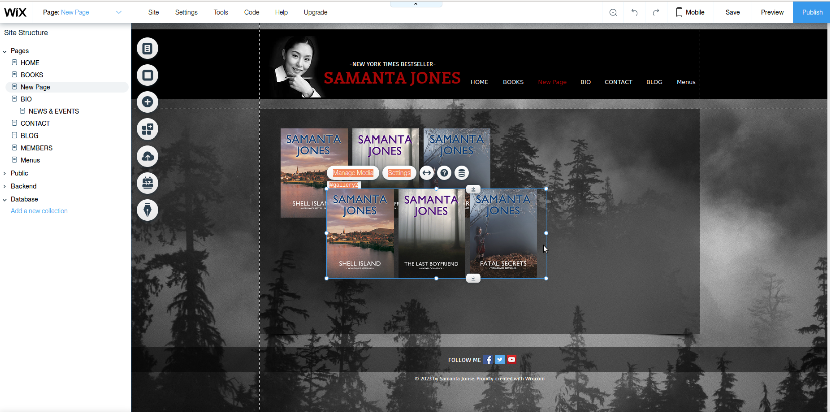 author website wix